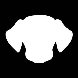 Kutya   Dog 🐶